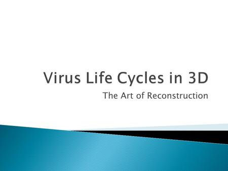 The Art of Reconstruction.  In order to survive, viruses must be able to do the following: ◦ 1. Find a host cell it can replicate in ◦ 2. Bind to that.