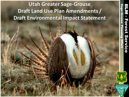 Sage-Grouse Planning Effort - Forest Service Sage-Grouse Planning Effort - Forest Service Utah Greater Sage-Grouse Draft Land Use Plan Amendments / Draft.