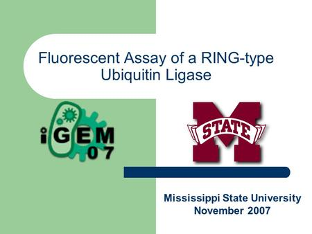Fluorescent Assay of a RING-type Ubiquitin Ligase Mississippi State University November 2007.