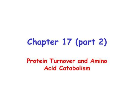 Chapter 17 (part 2) Protein Turnover and Amino Acid Catabolism.