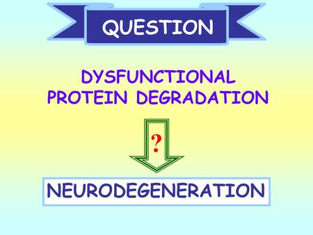 QUESTION DYSFUNCTIONAL PROTEIN DEGRADATION NEURODEGENERATION ?
