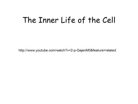 The Inner Life of the Cell