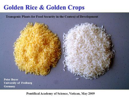 Golden Rice & Golden Crops Peter Beyer University of Freiburg Germany Transgenic Plants for Food Security in the Context of Development Pontifical Academy.