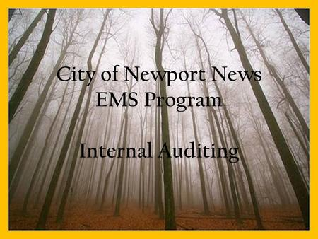 City of Newport News EMS Program Internal Auditing.