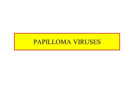 PAPILLOMA VIRUSES. Papilloma Viruses Characteristics –dsDNA viruses (circular) –Genone 8 kbp –Genome associated with cellular histones –Naked capsid Widespread.