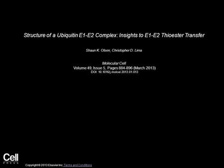 Structure of a Ubiquitin E1-E2 Complex: Insights to E1-E2 Thioester Transfer Shaun K. Olsen, Christopher D. Lima Molecular Cell Volume 49, Issue 5, Pages.