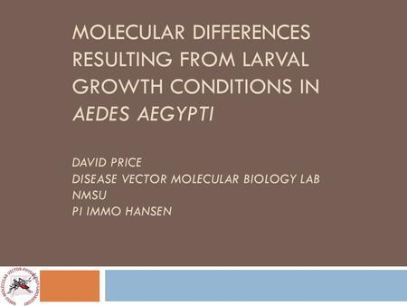 MOLECULAR DIFFERENCES RESULTING FROM LARVAL GROWTH CONDITIONS IN AEDES AEGYPTI DAVID PRICE DISEASE VECTOR MOLECULAR BIOLOGY LAB NMSU PI IMMO HANSEN.