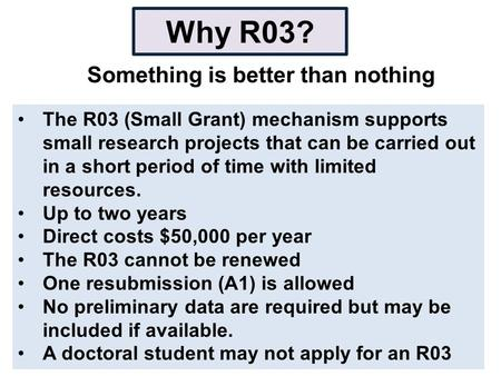 Why R03? Something is better than nothing The R03 (Small Grant) mechanism supports small research projects that can be carried out in a short period of.