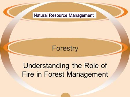 Forestry Understanding the Role of Fire in Forest Management.