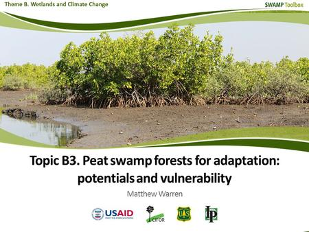<strong>Topic</strong> B3. Peat swamp forests <strong>for</strong> adaptation: potentials and vulnerability Matthew Warren.