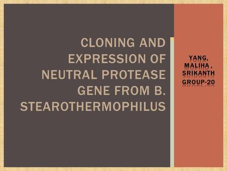 CLONING AND EXPRESSION OF NEUTRAL PROTEASE GENE FROM B. STEAROTHERMOPHILUS.