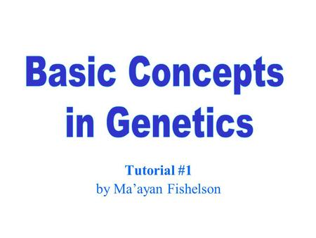 Tutorial #1 by Ma'ayan Fishelson. 2 Genetic Information Gene – basic unit of genetic information. Genes determine the inherited characters. Genome – the.