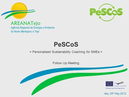 Italy, 29 th May 2012 PeSCoS = Personalised Sustainability Coaching for SMEs = Follow Up Meeting.