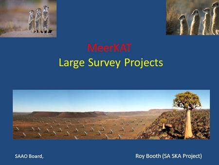 MeerKAT Large Survey Projects SAAO Board, Roy Booth (SA SKA Project)