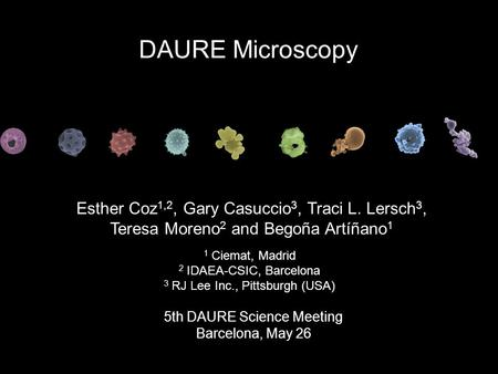 Esther Coz 1,2, Gary Casuccio 3, Traci L. Lersch 3, Teresa Moreno 2 and Begoña Artíñano 1 5th DAURE Science Meeting Barcelona, May 26 DAURE Microscopy.