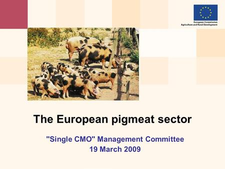 Single CMO Management Committee 19 March 2009 The European pigmeat sector.