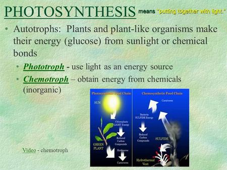 PHOTOSYNTHESIS means putting together with light.