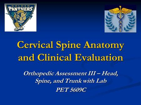 Cervical Spine Anatomy and Clinical Evaluation