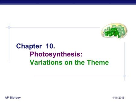 AP Biology 4/18/2015 Chapter 10. Photosynthesis: Variations on the Theme.