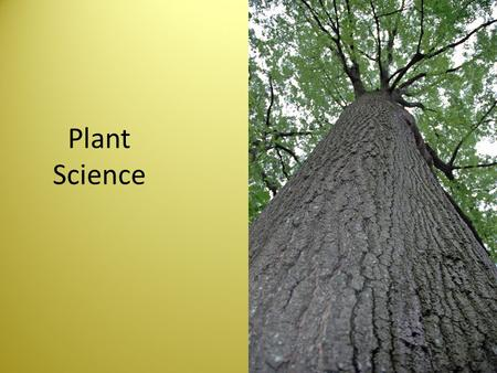 Plant Science.