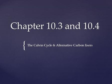 The Calvin Cycle & Alternative Carbon fixers