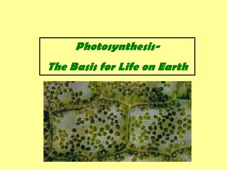 Photosynthesis- The Basis for Life on Earth. Photosynthesis- is the process that converts light energy into chemical energy. This chemical energy is usually.