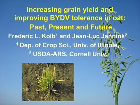 Increasing grain yield and improving BYDV tolerance in oat: Past, Present and Future Frederic L. Kolb 1 and Jean-Luc Jannink 2 1 Dep. of Crop Sci., Univ.