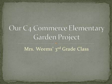 Mrs. Weems' 3 rd Grade Class The Sun Over the Garden By Haley Wurst The sun is shining brightly Calling the plants to grow Taking care of them Like a.