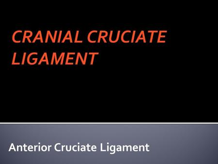 Anterior Cruciate Ligament. -GENETIC -ENVIRONMENT -OTHER.