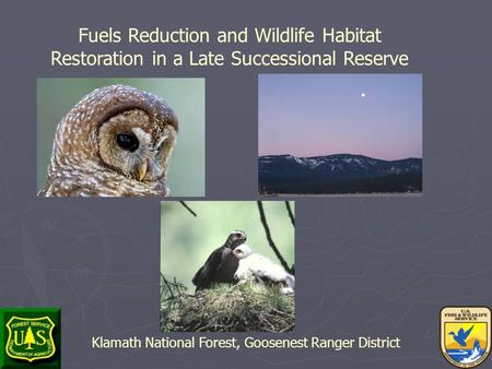 Fuels Reduction and Wildlife Habitat Restoration in a Late Successional Reserve Klamath National Forest, Goosenest Ranger District.