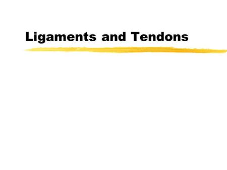 Ligaments and Tendons. Ligaments zAugment the mechanical stability of joints zGuide joint motion zPrevent excessive motion.