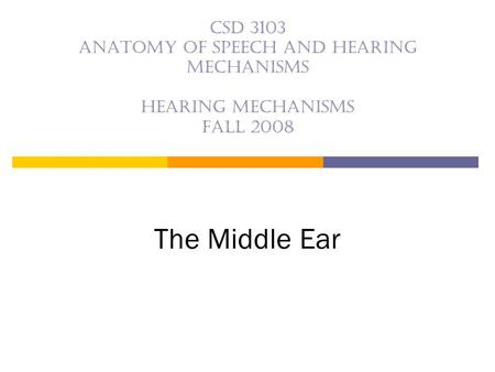 CSD 3103 anatomy of speech and hearing mechanisms Hearing mechanisms Fall 2008 The Middle Ear.