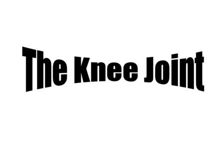 The Knee Joint.