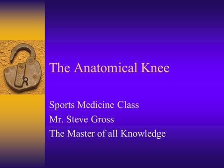 The Anatomical Knee Sports Medicine Class Mr. Steve Gross The Master of all Knowledge.