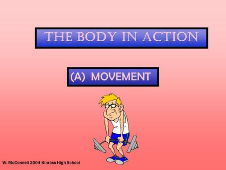W. McConnell 2004 Kinross High School The Body In Action (A) MOVEMENT.