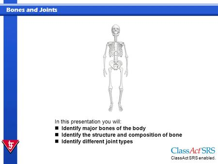 Bones and Joints In this presentation you will: Identify major bones of the body Identify the structure and composition of bone Identify different joint.