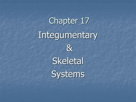 Chapter 17 Integumentary &SkeletalSystems. Includes: Includes: Epithelial cells make up skin & linings of digestive & respiratory Systems Epithelial cells.