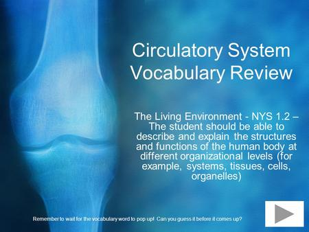 Circulatory System Vocabulary Review The Living Environment - NYS 1.2 – The student should be able to describe and explain the structures and functions.