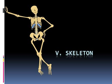 V. Skeleton http://4vector.com/free-vector/human-skeleton-outline-clip-art-108239.