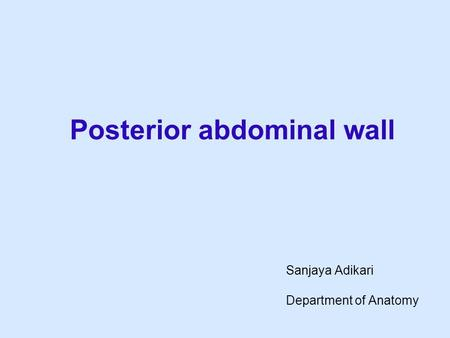 Posterior abdominal wall Sanjaya Adikari Department of Anatomy.