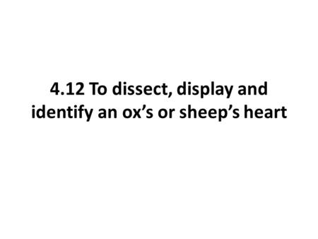 4.12 To dissect, display and identify an ox's or sheep's heart.