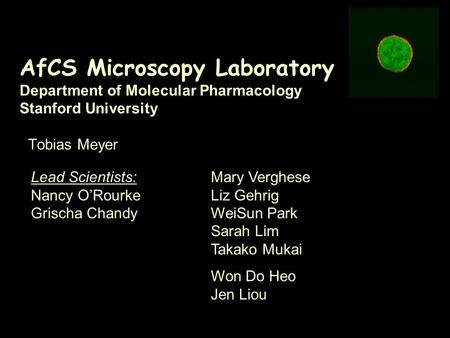 AfCS Microscopy Laboratory Department of Molecular Pharmacology Stanford University Tobias Meyer Lead Scientists: Nancy O'Rourke Grischa Chandy Mary Verghese.