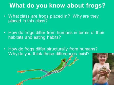 What do you know about frogs? What class are frogs placed in? Why are they placed in this class? How do frogs differ from humans in terms of their habitats.
