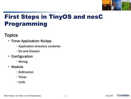 Feb 2007WSN Training: First Steps in nesC Programming1 First Steps in TinyOS and nesC Programming Topics  Timer Application: MyApp  Application directory.