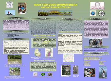 WHAT I DID OVER SUMMER BREAK (AND WHAT THIS MEANS FOR YOU!) Betzy Willis Standards Objectives RESOURCES Activities/Investigations ACKNOWLEDGEMENTS Research.