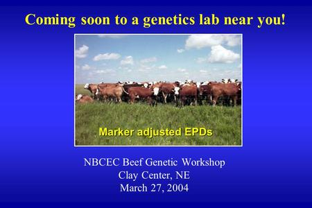 Coming soon to a genetics lab near you! NBCEC Beef Genetic Workshop Clay Center, NE March 27, 2004 Marker adjusted EPDs.