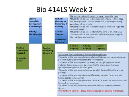 Bio 414LS Week 2 Lecture: Normal Fly Development & Microscopy Activity: Disc dissection Lecture: Fly Genetics, Husbandry & Handling Activity: Virgining.