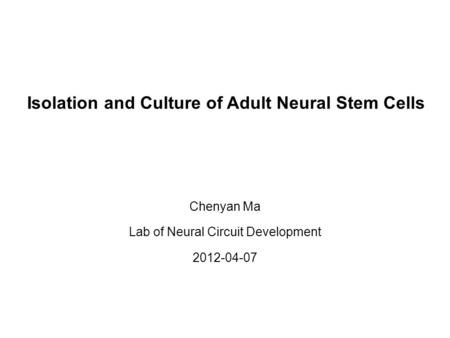 Isolation and Culture of Adult Neural Stem Cells Chenyan Ma Lab of Neural Circuit Development 2012-04-07.