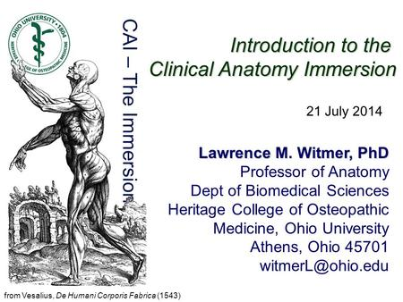 Clinical Anatomy Immersion