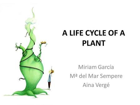 A LIFE CYCLE OF A PLANT Miriam García Mª del Mar Sempere Aina Vergé.